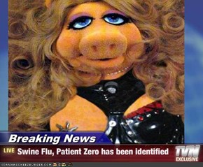 Breaking News - Swine Flu, Patient Zero has been identified
