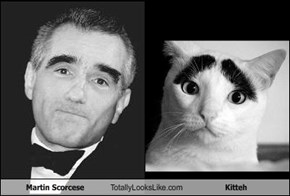 Martin Scorcese Totally Looks Like Kitteh