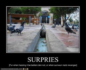 SURPRIES