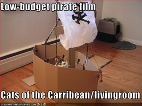 Low-budget pirate film  Cats of the Carribean/livingroom