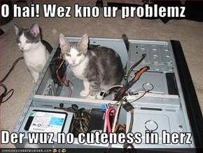 O hai! Wez kno ur problemz  Der wuz no cuteness in herz