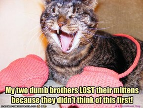 My two dumb brothers LOST their mittens because they didn't think of this first!