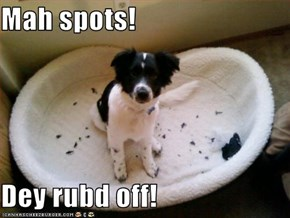 Mah spots!  Dey rubd off!