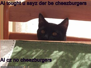 Ai tought u sayz der be cheezburgers  Ai cz no cheezburgers