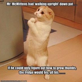 Mr. McMittens had 'walking upright' down pat . . .