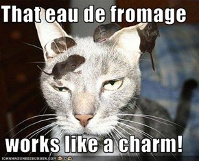 That eau de fromage  works like a charm!