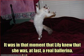 It was in that moment that Lily knew that 