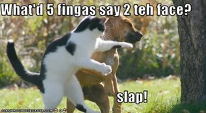 What'd 5 fingas say 2 teh face?                                           slap!