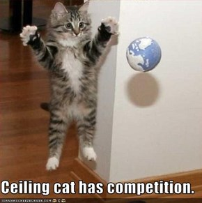 Ceiling cat has competition.