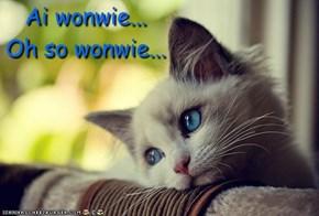 Ai wonwie...Oh so wonwie...