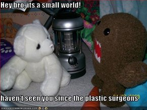 Hey bro, its a small world!  haven't seen you since the plastic surgeons