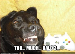 TOO... MUCH... HALO 3...