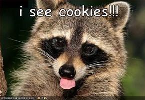 i see cookies!!!