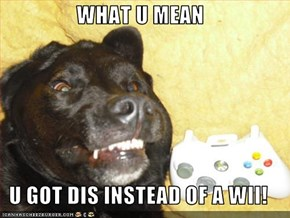 WHAT U MEAN  U GOT DIS INSTEAD OF A WII!