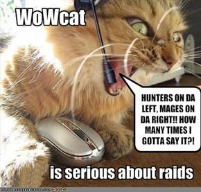 WoWcat