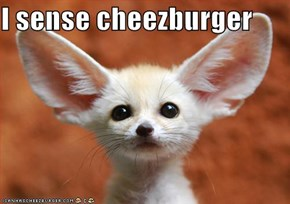 I sense cheezburger