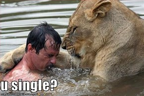 u single?