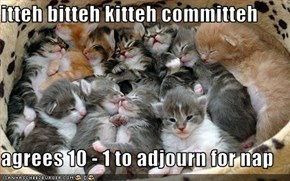 itteh bitteh kitteh committeh  agrees 10 - 1 to adjourn for nap