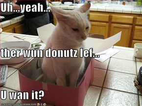 Uh...yeah... ther wun donutz lef... U wan it?