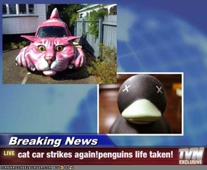 Breaking News - cat car strikes again!penguins life taken!