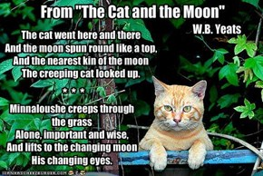 "From ""The Cat and the Moon"""