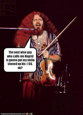 The next wise guy who calls me Hagrid is gonna get my violin shoved up his @$$, ok?