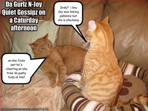 Da Gurlz N-Joy  Quiet Gossipz on a Caturday afternoon