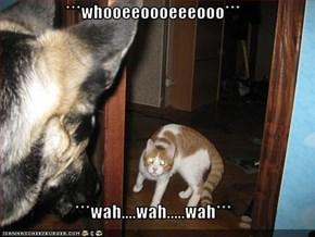 ***whooeeoooeeeooo***  ***wah....wah.....wah***