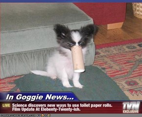 In Goggie News... - Science discovers new ways to use toilet paper rolls.  Film Update At Elebenty-Twenty-ish.