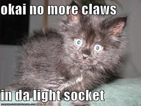 okai no more claws   in da light socket
