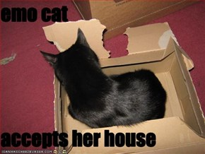 emo cat   accepts her house