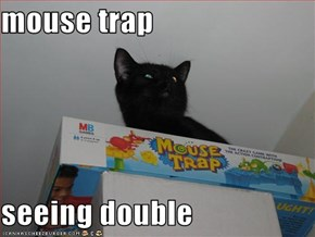 mouse trap   seeing double