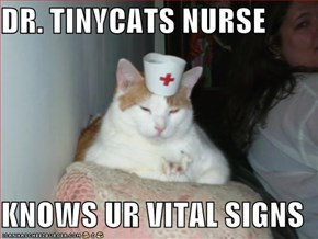 DR. TINYCATS NURSE  KNOWS UR VITAL SIGNS