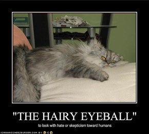 """THE HAIRY EYEBALL"""