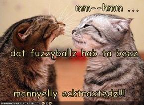mm--hmm ...  dat fuzzyballz hab ta beez mannyelly ecktraxtedz!!!