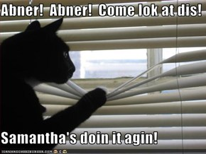 Abner!  Abner!  Come lok at dis!  Samantha's doin it agin!