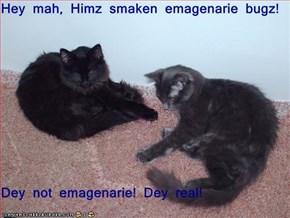 Hey mah, Himz smaken emagenarie bugz!  Dey not emagenarie! Dey real!