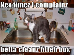 Nex timez I complainz  betta cleanz litteh box