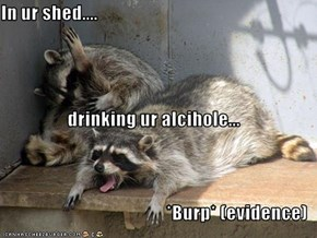 In ur shed.... drinking ur alcihole... *Burp* (evidence)
