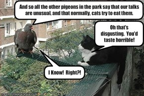 And so all the other pigeons in the park say that our talks are unusual, and that normally, cats try to eat them.