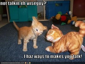not talkin eh wiseguy?  I haz ways to makes you talk!