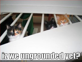 iz we ungrounded yet?
