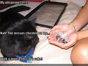 My offspring??!!?? Nah! The missus cheated on me... With a mouse for cat's sake!