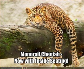 Monorail Cheetah -  