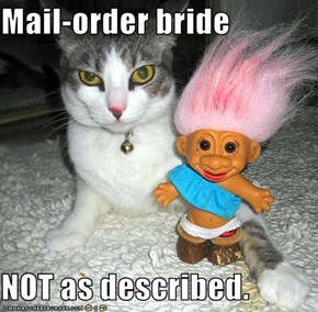 Mail-order bride  NOT as described.