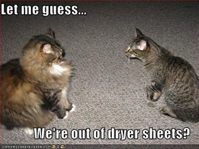 Let me guess...  We're out of dryer sheets?