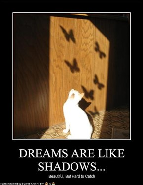 DREAMS ARE LIKE SHADOWS...