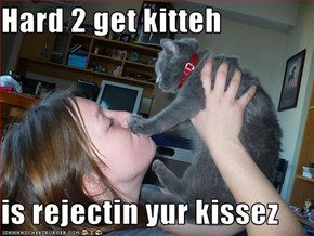 Hard 2 get kitteh  is rejectin yur kissez