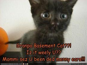Granpa Basement Cat??!Iz it weely U??Mommi sez U been ded menny ears!!!