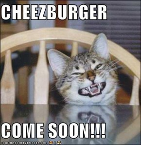 CHEEZBURGER  COME SOON!!!